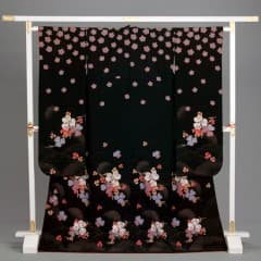 黒 雪輪 桜と酢漿草文