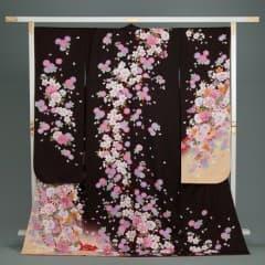 焦茶/淡黄 桜地紋 菊桜花束ね熨斗