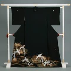 蛇籠に菖蒲 白鳳凰