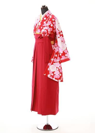 卒業式 袴セット / 0047